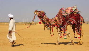 Jaisalmer Holiday Tour Package